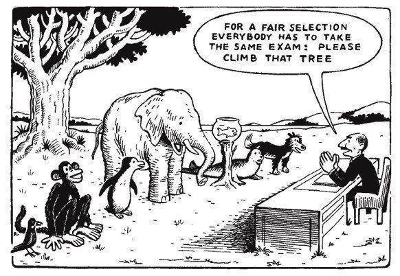 """""""Para uma seleção justa todos farão a mesma prova: por favor, subam aquela árvore"""""""